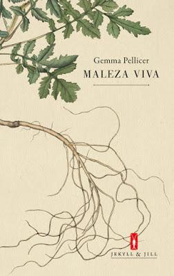 tmp_7853-maleza-viva-1181798155