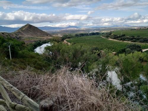 El Ebro a su paso por El Cortijo